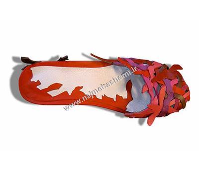 نمونه طرح کفش هالینک