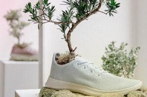 کفش اکو یا دوست دار محیط زیست